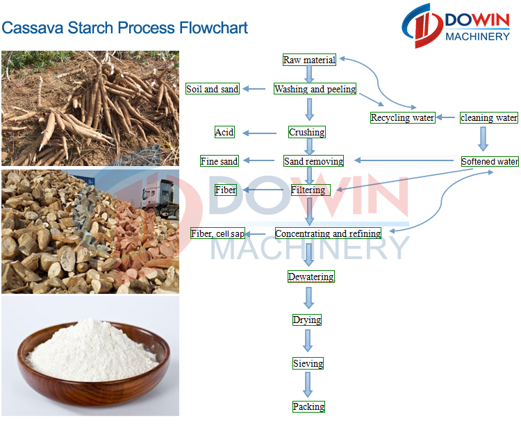 cassava derived starch as component for Genetic modification for designer starch from cassava starch is a major component of cassava that elevates derived starch in having lower protein and lipid.