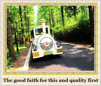 more than 10 years experience in theme park diesel trackless train