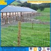 galvanized grassland High tensile fencing
