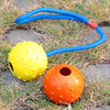 Strong magnetic ball on rope for dog training