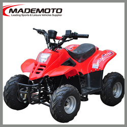 Hot Selling electric quad bike 1000w to Slovakia from China Factory