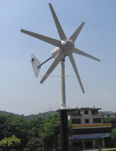 12 V 24 V 300 W eléctrica bobinado del motor, motor generador de viento