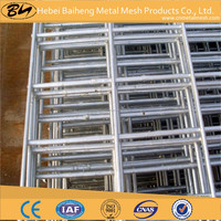hight quality welded mesh for bird cages of china supplier