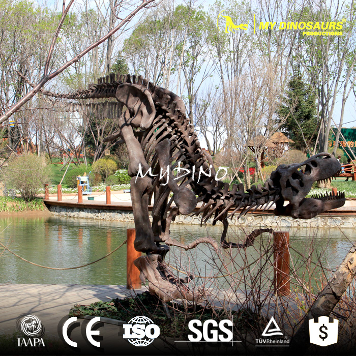skeleton for sale.jpg