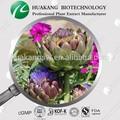 artichaut extrait cynarine naturelles poudre de graisse dans le sang