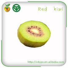 Chinese bulk fresh red kiwi fruit