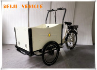 CE aluminum alloy family electric pedal 3 wheeler tuk