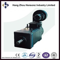 20kw Chinese Wholesale AC servo drive electric car motor