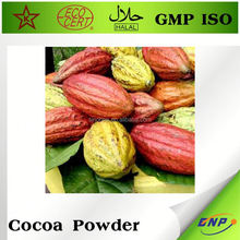 indonesia cocoa powder manufacturers
