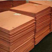 Copper Cathode at low Price CIF ASWP