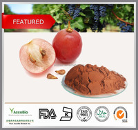 High quality Natural Red Grape Extract, Red grape seed & skin extract 75% Polyphenols