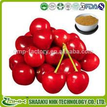 100% natural acerola cherry extract/ acerola cherry extract powder/acerola cherry extract vitamin c
