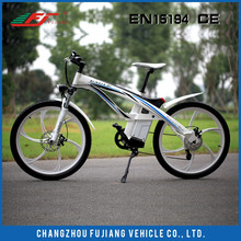 FUjiang eagle 26'- Electric mountain bike, buy good quality electric bike in China