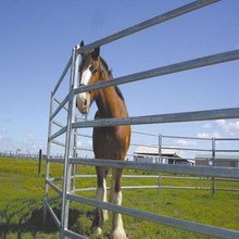 Cattle Corrals, Portable Horse Stall,Pen,Panels,Horse Fencing(delivery fast/factory price)