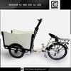 Denmark carriage bike BRI-C01 49cc trike gas scooter