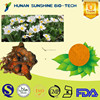 natural botanical extract Sanguinarine Bloodroot Extract for antiplaque
