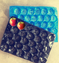 Vacuum Formed Blister Packaging Disposable Plastic Tray For Fruit Packaging