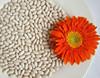 Grade A New Crop White Kidney Beans Bai Shake Type