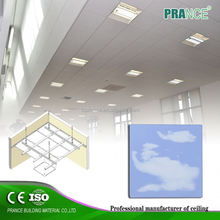 Hot Sell Delicate C shaped suspended ceilings