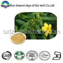 FREE Sample Damiana Leaf Extract