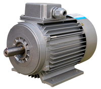 electric motor in wood machine