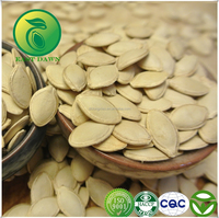 China Shine Skin Pumpkin Seeds With Best Price For Sale