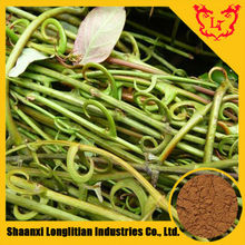 Best Quality Uncaria Tomentosa Extract 5:1 ,10:1,20:1