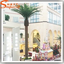 2015 factory price supply hot sale all types of decorative royal palm tree plants