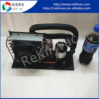 Reliable 48VDC Unidad Condensadora De Refrigeracion Unit with Temperature Controller for Mini Chiller
