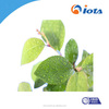 Efficiel Agricultural wetting agent can Soluble in xylene IOTA-2000-26