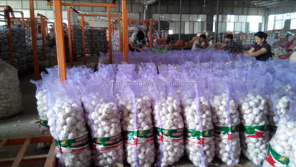 China cheap garlic/naturel ali/fresh garlic/natural garlic for wholesale