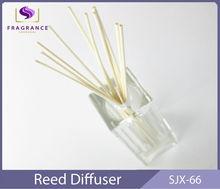 Nueva sala de olores costeros Aroma difusor de lámina