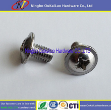 Your first choice! Delicate machine screws Stainless Steel Big Truss Head Phillips for SS or iron