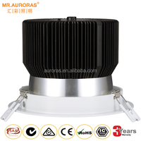 Top Selling Professional Adjustable Led Cob 3000k 30w Downlight With Ce