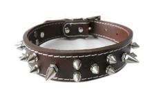 AMIGO PET top grain genuine leather spiked dog collar