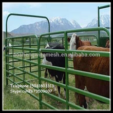 Galvanized welded cattle panel fence(Anping company)