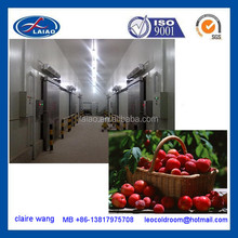 fresh cherry fruit walking in cold room