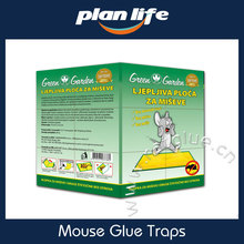 Best Natural Pest Control Foldable Mouse Glue Trap Box