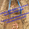 China Tractor hitched Single-row sweet potato digger for saleAgricultural Machinery
