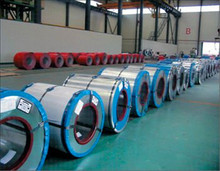 PPGI/PPGL/Color coated steel coils