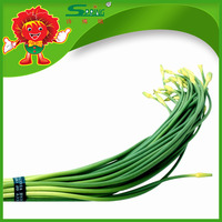 Natural Garlic Sliver Moss 100% Organic Garlic Sprouts