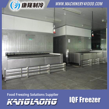 3000Kg/H Frozen Chicken Leg Quarters Fast Freezing Machine