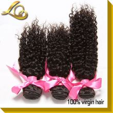 Afro Curl Virgin Brazilian Jerry Curl Hair Weave Extensions Human Hair