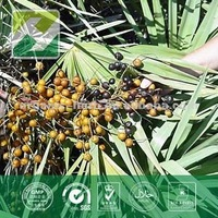 High Quality Saw Palmetto Berry Extract 25% Fatty Acid