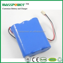 Shenzhen New Electronic Technology Masspower Customize voltage & capacity 12v li ion battery