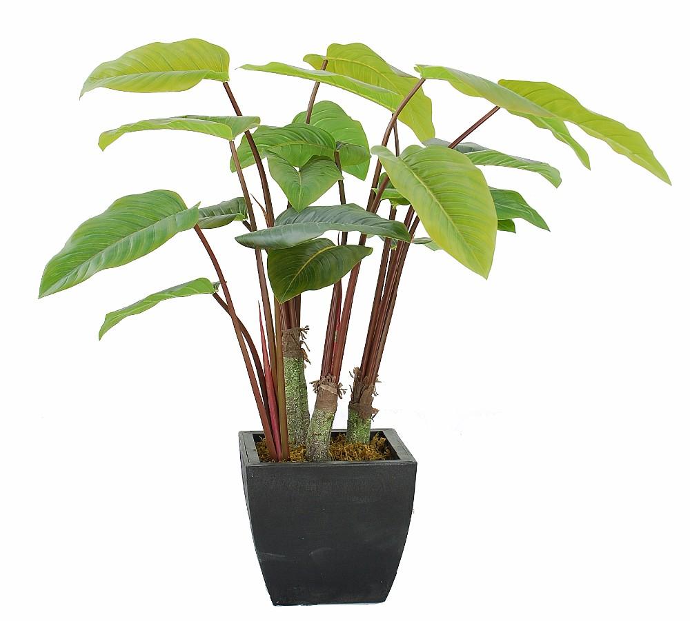 Solaire maison d cor biogaz artificielle ro plantes pour for Plante artificielle bureau