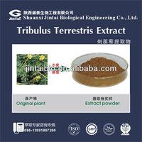Immunity enhancer, tribulus muscle enhancer, anti-aging