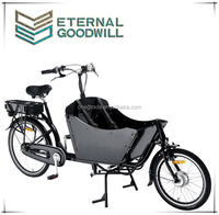 2015 hot sale electric cargo bike bicycle 26inch cargo bike/cargo tricycle bike/bakfiets electirc tricycle cargo bike UB9015E