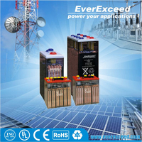 EverExceed rechargeable 2V flooded energy storage battery