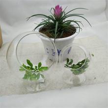 indoor plant glass terrarium round glass globe terrarium /hand blown glass gazing balls
